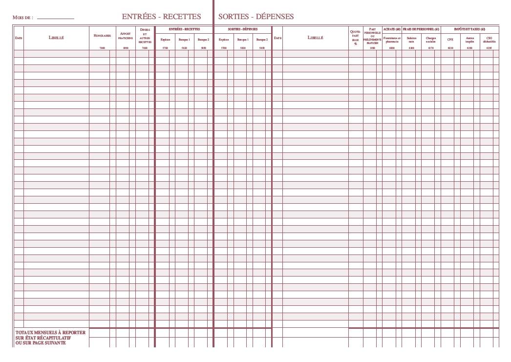 livre journal annuel des recettes et dépenses nouveau tracé intérieur pages de gauche